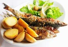 Pescados asados a la parilla de la sardina de Portugal foto de archivo libre de regalías