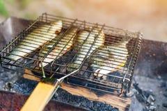 Pescados asados a la parrilla con las especias en el fuego Pesque la barbacoa en el jardín al aire libre, en un día soleado calie Imagen de archivo libre de regalías