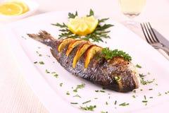Pescados asados a la parrilla de la brema de mar, limón, arugula en la placa Foto de archivo libre de regalías