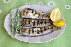 Pescados asados a la parrilla fritos en el tartle blanco con el limón Imagen de archivo