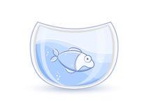 Pescados azules en el acuario de cristal Imágenes de archivo libres de regalías