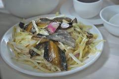 Pescados chinos de la anguila de la cebolleta fotografía de archivo