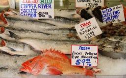 Pescados clasificados foto de archivo