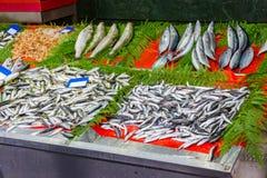 Pescados clasificados en el mercado para la venta Fotos de archivo