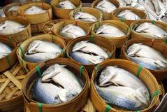 Pescados cocidos al vapor de la caballa en cesta imagenes de archivo