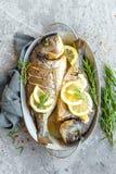 Pescados cocidos Dorado Brema de mar o pescados del dorada asados a la parrilla Fotografía de archivo