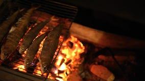 Pescados cocidos en la parrilla metrajes