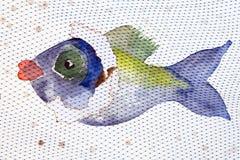 Pescados coloridos detrás de la red Imagen de archivo