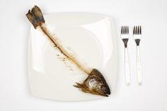 Pescados comidos Fotos de archivo libres de regalías