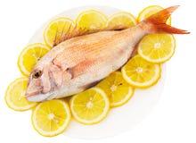Pescados con un limón Fotografía de archivo