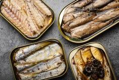 Pescados conservados en una lata imágenes de archivo libres de regalías