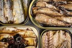 Pescados conservados en una lata fotografía de archivo