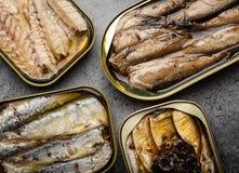 Pescados conservados en una lata imagenes de archivo