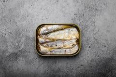 Pescados conservados en una lata fotos de archivo libres de regalías