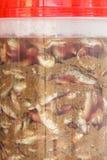 Pescados conservados en vinagre Foto de archivo