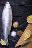 Pescados crudos con las especias imagen de archivo libre de regalías