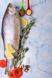 Pescados crudos con las especias fotos de archivo libres de regalías