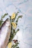 Pescados crudos con las especias foto de archivo libre de regalías
