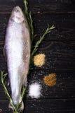 Pescados crudos con las especias fotos de archivo