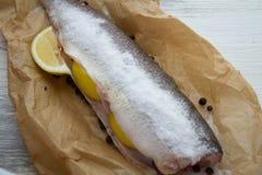 Pescados crudos con las rebanadas de limón Imagen de archivo