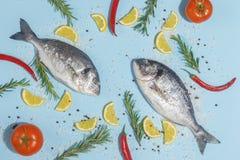 Pescados crudos del dorada con las especias, la sal, el lim?n y las hierbas, romero en un fondo ligth-azul Visi?n superior imagen de archivo libre de regalías