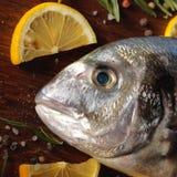 Pescados crudos del dorado con romero y sal del mar Fotos de archivo