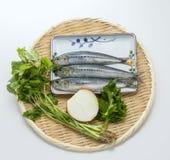 Pescados crudos frescos de la sardina con las hierbas y la cebolla del comino en la bandeja de bambú Fotografía de archivo