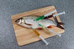 Pescados crudos, no cocinados Pescados blancos en una tabla de cortar hablada enigmáticamente con Fotos de archivo libres de regalías