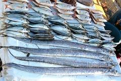 Pescados crudos, tiburones, pastinaca y camarones en el mercado marroquí en Essaouira fotos de archivo