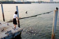 Pescados de alimentación del estudiante de mujer en el puerto foto de archivo libre de regalías
