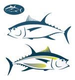 Pescados de atún Imagen de archivo