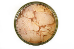 Pescados de atún en aceite en fondo Imagen de archivo libre de regalías