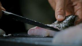 Pescados de bacalao metrajes