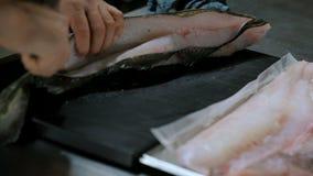 Pescados de bacalao almacen de metraje de vídeo