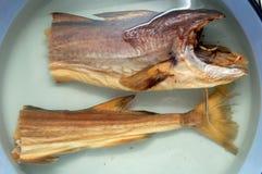 Pescados de bacalao en agua Imagen de archivo libre de regalías