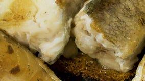 Pescados de bacalao que asan a la parrilla en un primer de la cacerola almacen de video