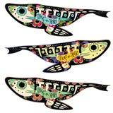 Pescados de Colorfull libre illustration