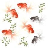 Pescados de la admiración libre illustration