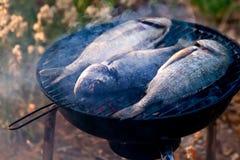 Pescados de la brema de mar que asan a la parrilla en el Bbq Fotografía de archivo libre de regalías