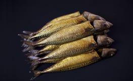 Pescados de la caballa Fotografía de archivo libre de regalías