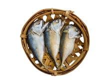 Pescados de la caballa en la bandeja de bambú Fotos de archivo