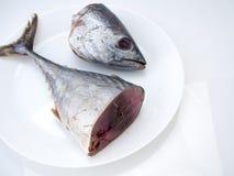 Pescados ( de la caballa; saba fish) en el fondo blanco fotografía de archivo