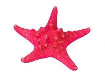 Pescados de la estrella Imágenes de archivo libres de regalías