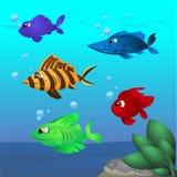Pescados de la historieta clasificados Foto de archivo