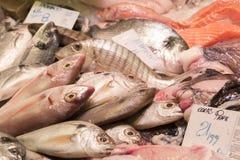 Pescados de la parada en el mercado Imágenes de archivo libres de regalías