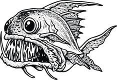 Pescados de la piraña Fotografía de archivo libre de regalías