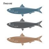 Pescados de la sardina Imagenes de archivo