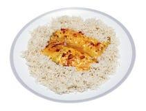 Pescados de los chiles con arroz Fotos de archivo libres de regalías