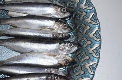 Pescados de los espadines en una placa imágenes de archivo libres de regalías