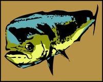 Pescados de Mahi-Mahi del delfín de Dorado - vector Imágenes de archivo libres de regalías